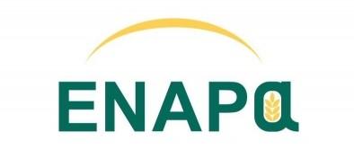 logo_enapa[1]